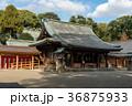 大宮氷川神社拝殿 36875933