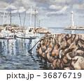 油絵 川奈漁港 漁港のイラスト 36876719