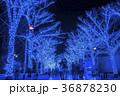 青の洞窟 SHIBUYA 36878230