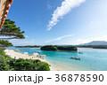 川平湾 海 砂浜の写真 36878590