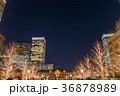 東京駅 丸の内側 ライトアップ 36878989
