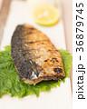 鯖 塩焼き 焼き魚の写真 36879745