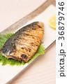 鯖 塩焼き 焼き魚の写真 36879746