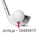GOLF ゴルフ クラブのイラスト 36880675