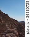 ロサンゼルス 36880735