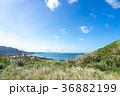 平久保崎 石垣島 風景の写真 36882199