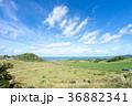 石垣島 平久保 海の写真 36882341