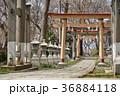 諏訪神社 神社 境内の写真 36884118
