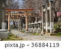 諏訪神社 神社 境内の写真 36884119