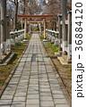 諏訪神社 神社 境内の写真 36884120