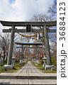 諏訪神社 神社 境内の写真 36884123