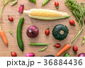 野菜 36884436