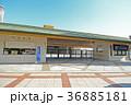 東京都墨田区 両国国技館 36885181