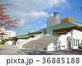 東京都墨田区 両国国技館 36885188