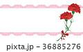 母の日 36885276