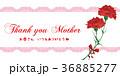 母の日 36885277