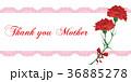 母の日 36885278