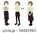 カフェ 店員 女性のイラスト 36885963