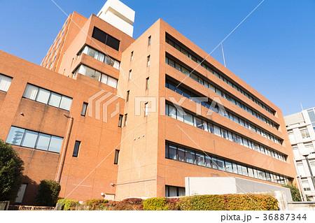 東京女子医科大学病院 東病棟 36887344