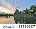 松本城 城 天守閣の写真 36889257