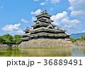 松本城 36889491