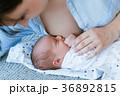 母乳育児 スケジュール 計画の写真 36892815