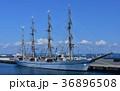帆船 36896508