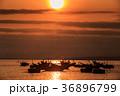 ボート 人影 影の写真 36896799
