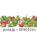 いちご イチゴ 苺のイラスト 36903241