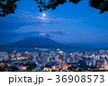 鹿児島 桜島の夜景 市街地 月光の錦江湾 36908573