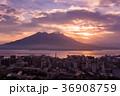 鹿児島 桜島 錦江湾の写真 36908759