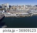 ドローン空撮・築地市場・隅田川・見下ろし 36909123