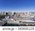 ドローン空撮・築地市場・水平 36909129