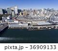 ドローン空撮・築地市場・隅田川・見下ろし 36909133