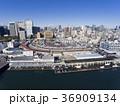 ドローン空撮・築地市場・隅田川・見下ろし 36909134
