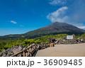 鹿児島 桜島 噴煙の写真 36909485