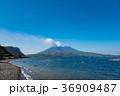 鹿児島 桜島 海の写真 36909487