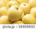 りんご 林檎 フルーツの写真 36909692