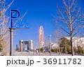 お台場 東京 街並みの写真 36911782