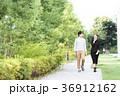 男女 新緑 歩道の写真 36912162