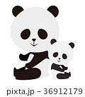 パンダ ジャイアントパンダ 動物のイラスト 36912179