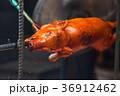 roast pig 36912462