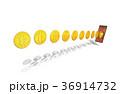 フィンテック スマートフォン iPhoneのイラスト 36914732