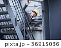 人物 男性 ビジネスの写真 36915036