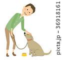 若い男性 パパ 犬の散歩 36918161