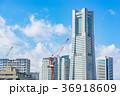神奈川県 横浜 快晴の写真 36918609