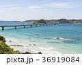 角島 角島大橋 風景の写真 36919084