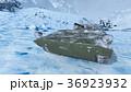 戦車 36923932