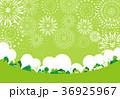 花火 公園 グリーン背景 36925967