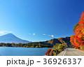富士山 秋 紅葉の写真 36926337